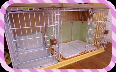 犬用室内トイレ画像